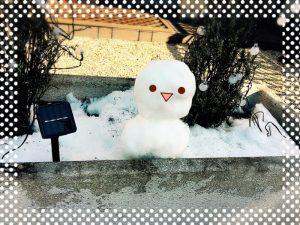 雪凄かったですね!!
